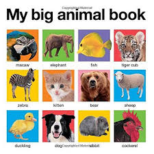 11. My Big Animal Book by Roger Priddy